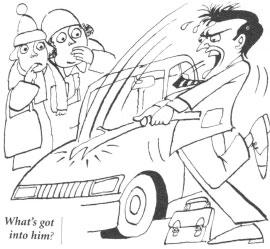 Идиомы. Road rage